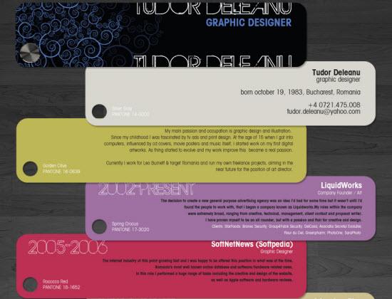 Resume Designs