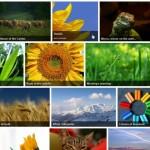 10 Best WordPress Image Gallery Plugins