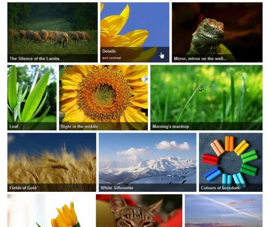 Wordpress-photo-gallery-pluggin_10