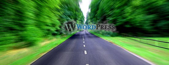 10 Steps to Speed up Your WordPress Blog