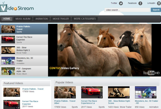 WordPress Video Gallery Plugins
