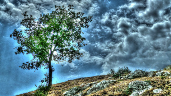HDR Photographs