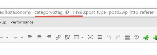 WP Category ID in URL