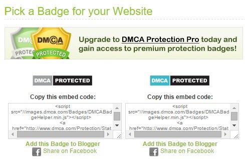 DMCA.com Protection Badge