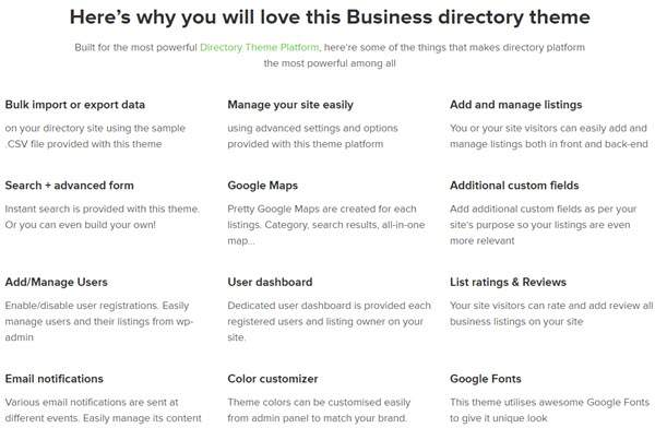 Business Directory Theme Features