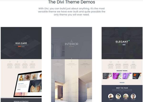 Elegant themes review 2017 best wordpress theme provider - Elegant theme divi ...