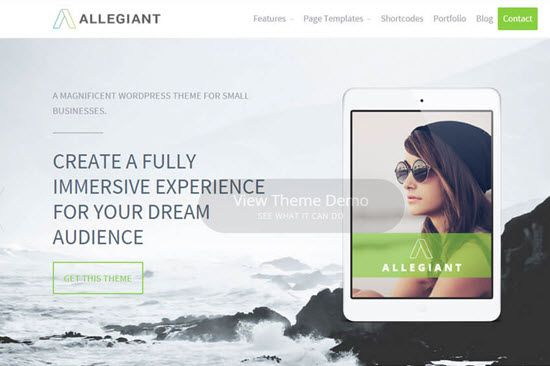 Allegiant Free WordPress Themes