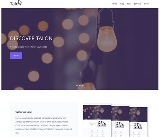 Talon Free WordPress Themes