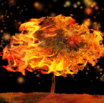 Burning Tree Photoshop Tutorial