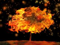 burning_image