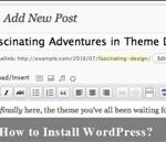 How to Install WordPress? Beginner Guide